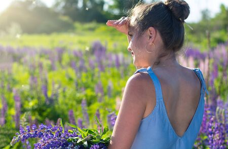 A young beautiful girl (woman) looks at a field of blooming flowers (lupins). Natural background, summer walks, weekends. Stock Photo