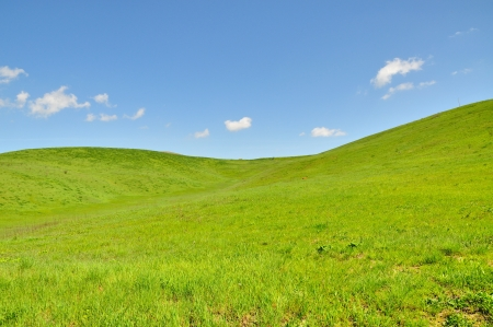 A country landscape with green hills in spring