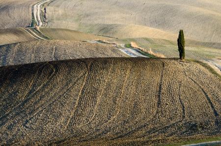 Crete Senesi (Toscana)