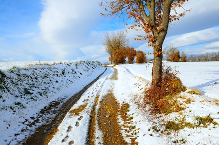 pass away: Snowy landscape of a little wood in Tuscany