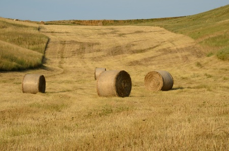 A beautiful summer country landscape in Tuscany photo