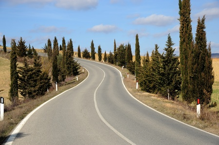 Open road in Tuscany in a sunny day photo