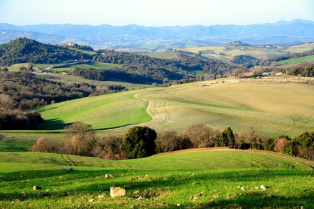 tuscan: Scenic view of typical Tuscany landscape, Italy