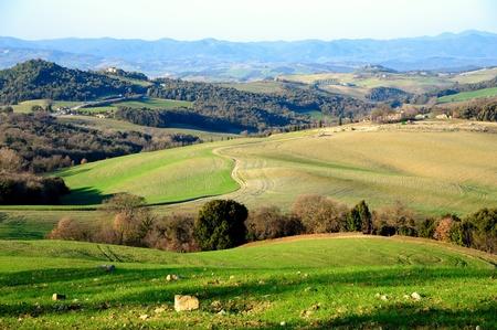 Vista panoramica del tipico paesaggio toscano, Italia Archivio Fotografico