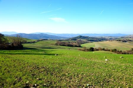 Tuscan landscape photo