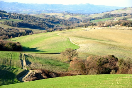 Scenic view of typical Tuscany landscape, Italy Stock Photo - 12850023