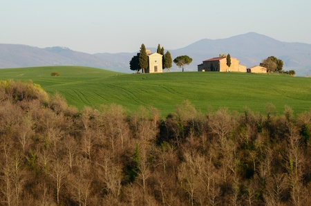 Springs brings an explosion of volours in the Tuscan valleys Stock Photo - 13277812