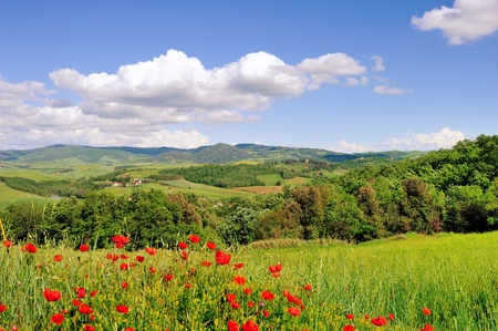 A beautiful landscape in springtime along the roads of Tuscany photo