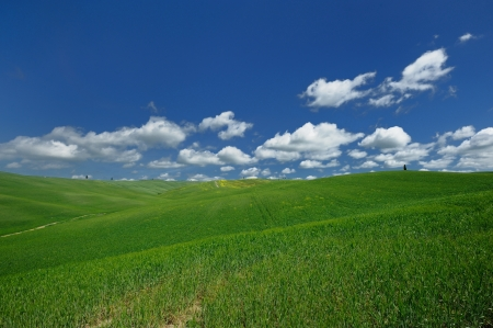 The landscape odf the