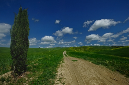 The landscape odf the 'Crete Senesi' in Tuscany photo