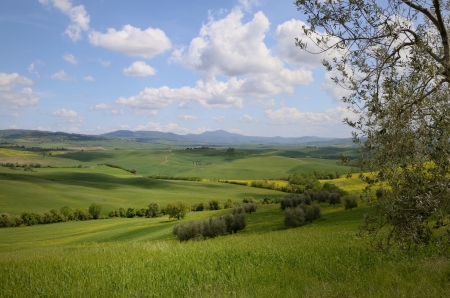 The landscape in Tuscany