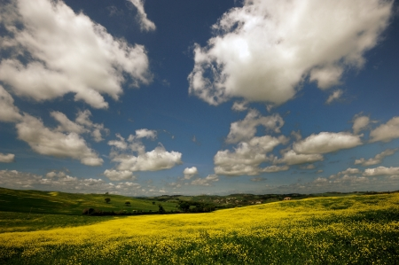 One of the most beautiful country landscape in Tuscany Stock Photo - 13752319