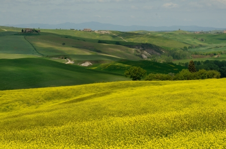 One of the most beautiful country landscape in Tuscany Stock Photo - 13752488