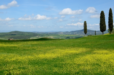 One of the most beautiful country landscape in Tuscany Stock Photo - 13841947