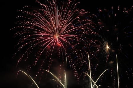 Fuochi d'artificio che esplodono nel corso di un cielo notturno