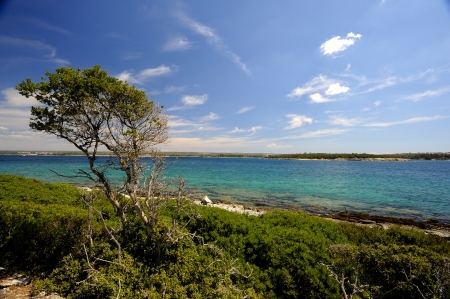 Brijuni Islands  are a group of fourteen small islands in the Croatian part of the northern Adriatic Sea