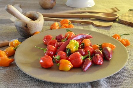 flavoring: Beautiful and colored chili peppers on a wooden base