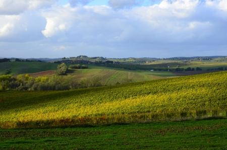 Un Hermoso Paisaje Toscano Con Colores Oto?ales Fotos, Retratos ...