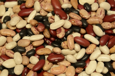 A colored choice of mixed dry beans
