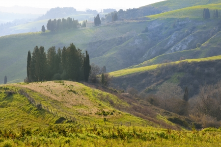 Last light of the day on tuscan hills  photo