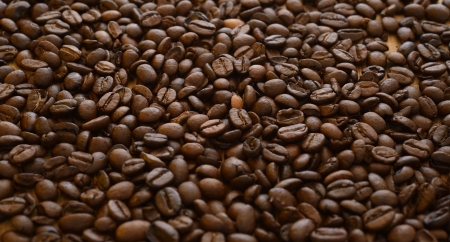 find similar images: Save to a Lightbox ▼      Find Similar Images   Share ▼  Brown coffee beans, close-up of coffee beans for background and texture Stock Photo