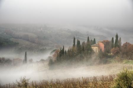 Prime ore del mattino su campagna, San Gimignano, Toscana, Italia