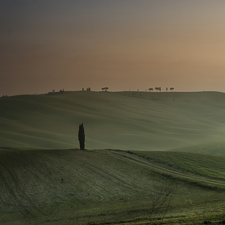 agriturismo: A beautiful tuscan landscape in the early morning light Stock Photo