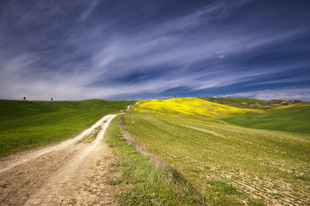 asciano: The beautiful colors of the spring in the landscapes of Crete Senesi in Tuscany