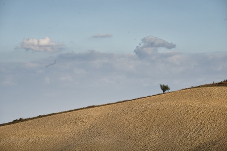 The most famous country landcape in Tuscany during autumn