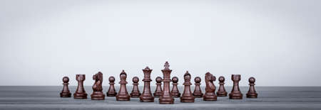 Set of chess figures board game isolated on the white background