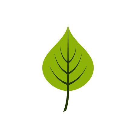 Cartoon style linden leaf vector illustration isolated on white background.  イラスト・ベクター素材