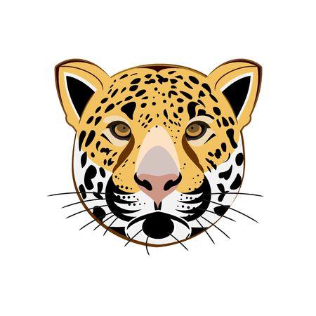 leopard head: Beautiful leopard head vector illustration isolated on white backgorund.