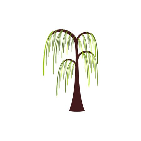 Beautiful stylized willow tree vector illustration isolated on white background.