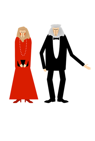 baboon: A couple of Baboon dressed up