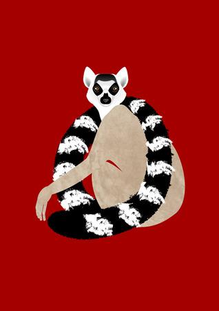 sit around: Lemur Stock Photo