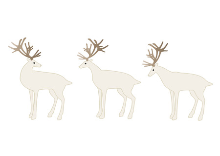 on white: White reindeers