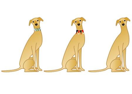 collarin: Variación cuello Sentado perro Vectores