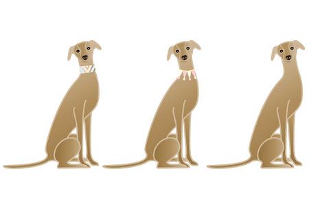 dog collar: Sitting Dog collar variation