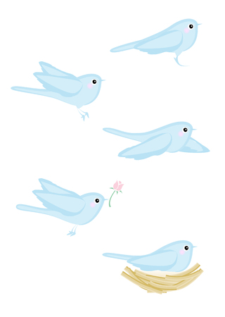 variations: Cute Blue Bird variations