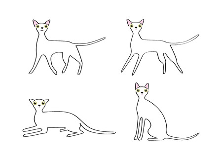 lie down: Cute cat image, variations of movement