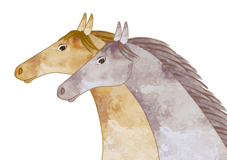 in profile: Profile of two horses