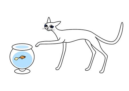 goldfish bowl: Cat and goldfish bowl Stock Photo