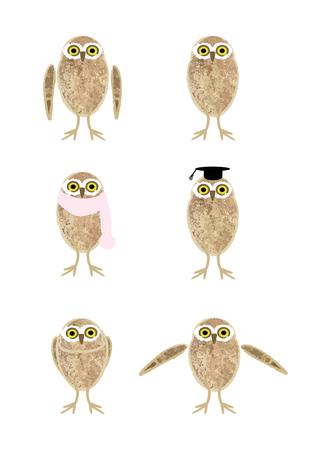 humorous: Humorous illustrations of owl