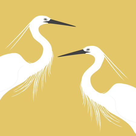 profile: Profile of two egret Stock Photo