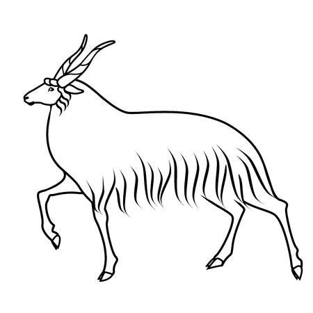 Drawing of walking sheep Stock Photo