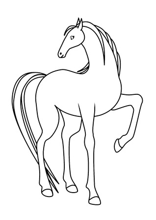 Drawing of a horse looking back shoulder
