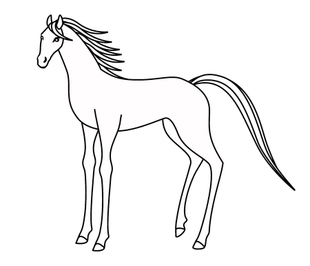 Drawing a horse blowing in the wind Stock Photo