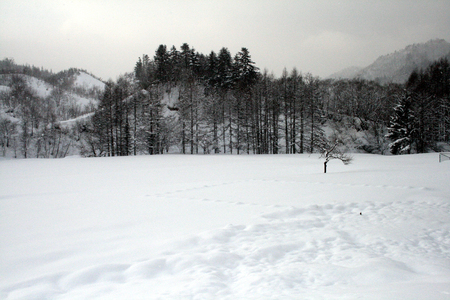 In the morning in the mountains, snow-covered landscape 写真素材