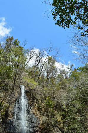 Falls down the Rocky steep of the forest on a sunny summer day 版權商用圖片