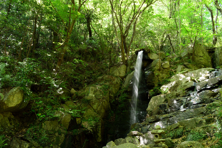 Waterfall in the forest where sunbeams through 写真素材